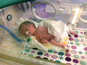 inkubator2